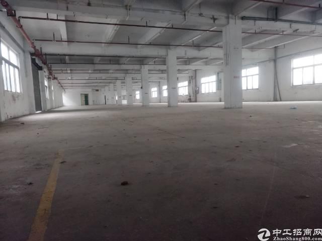 白沙二楼现成办公室1500平米厂房出租