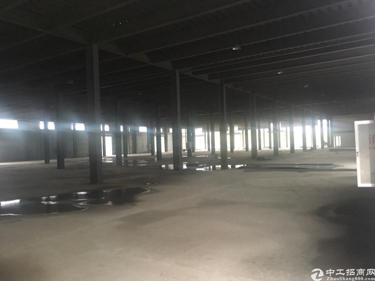 武汉市东西湖全新物流仓储港出租-图4