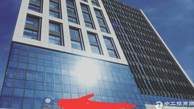 光明新区全新红本厂房出租