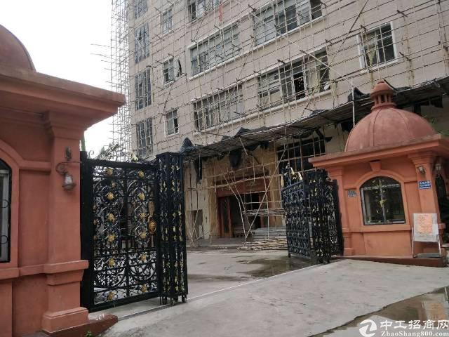 虎门怀德大埔工业区标准楼房分租一层2300方,带豪华装修