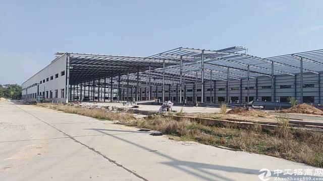 茶山镇超大钢结构厂房