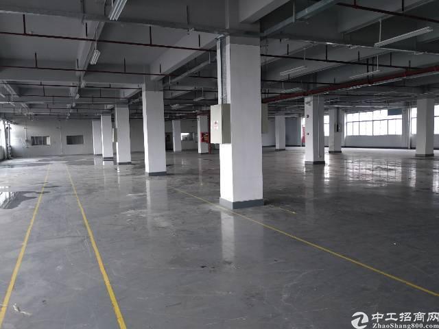 沙井民主新出2楼厂房2200平米招租,有红本,有消防证,