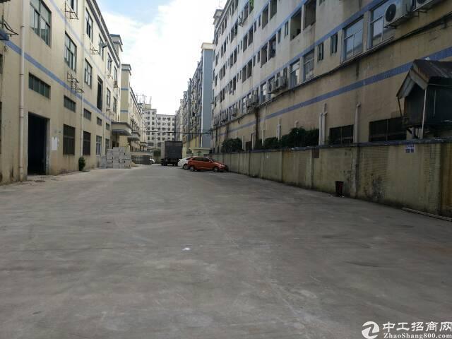 原房东厂房带装修大小可分共6000平