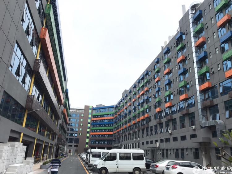 西乡银田双补贴产业园3000平毛坯房自由装修配套齐全