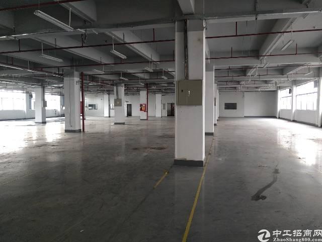 西乡臣田工业区有1200平米厂房出租