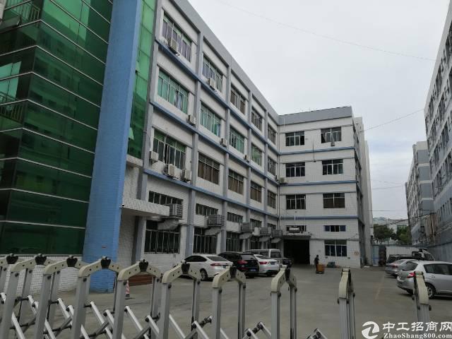 凤岗新出1500平米带办公室带地坪漆标准厂房