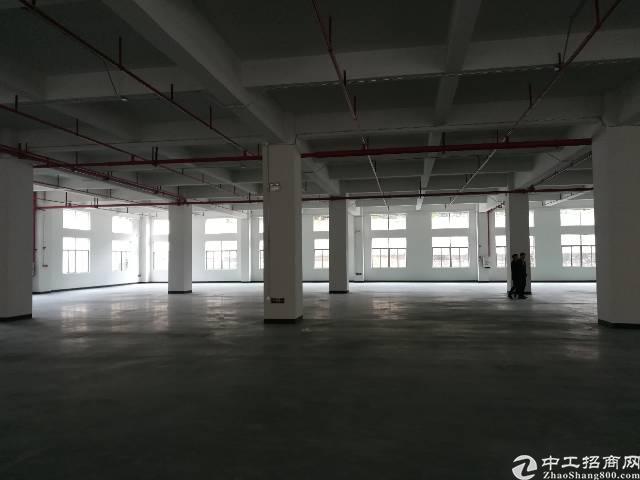 全新红本厂房分租一楼1400平方起