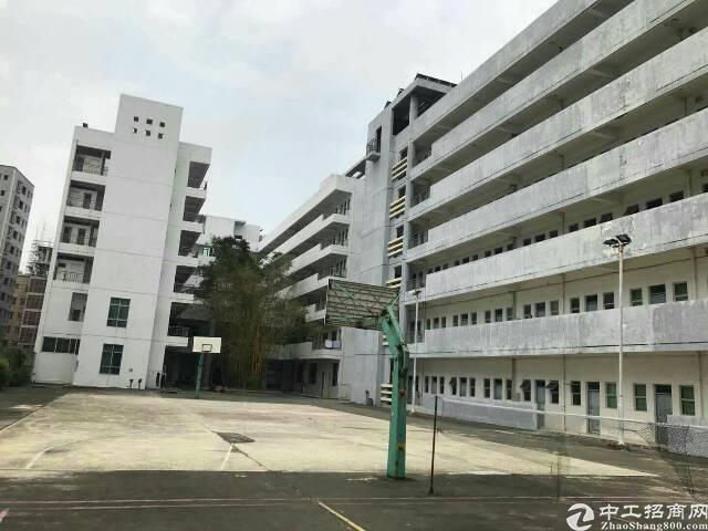 惠阳三和经济开发区大型厂房