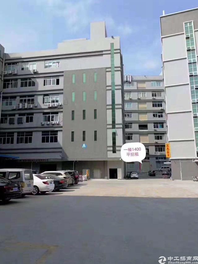 凤岗碧湖大道边一楼1400平米精装修厂房出租