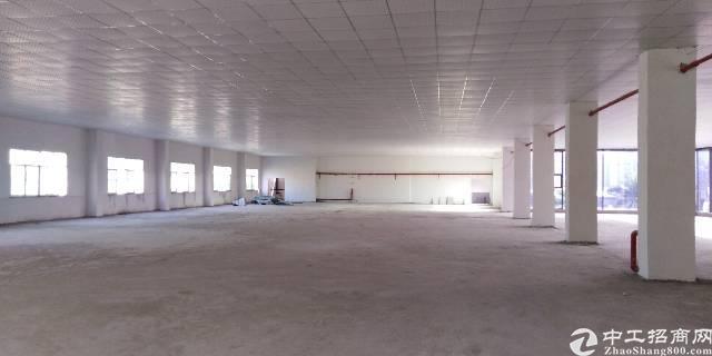 全新高新技术产业园四楼招租
