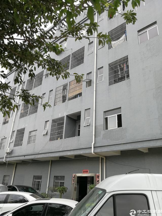 惠阳新圩镇占地2000㎡建筑4540平方㎡大工业园内独院标准