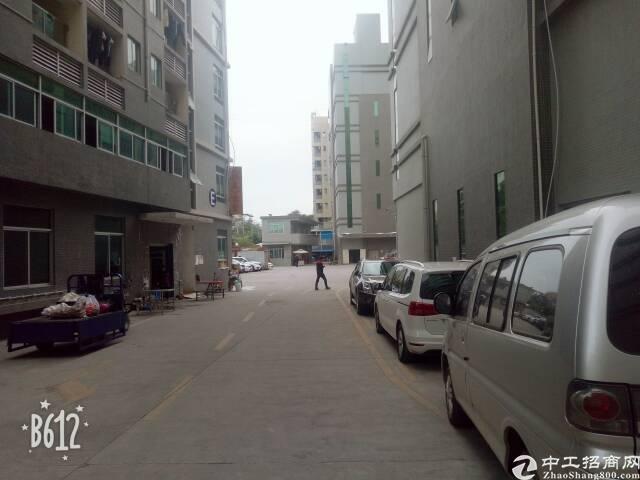 凤岗五联精装修地坪漆