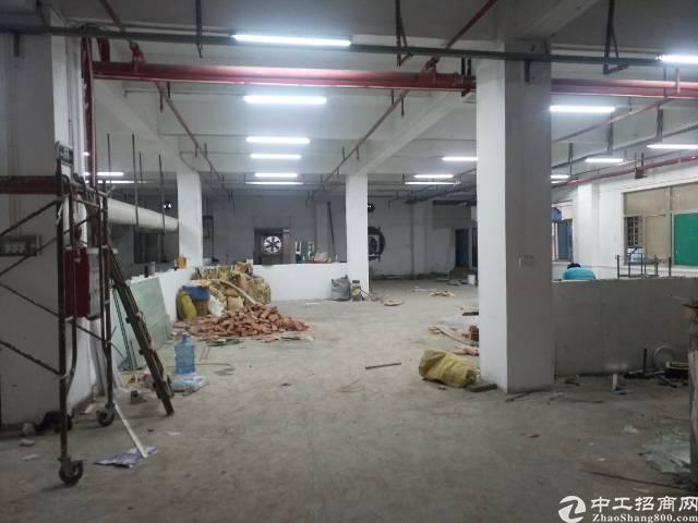 凤岗镇原房东一楼740平方无公摊