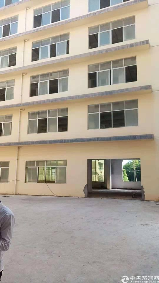 惠阳新圩国道旁占地9000㎡建筑面积18000厂房出售