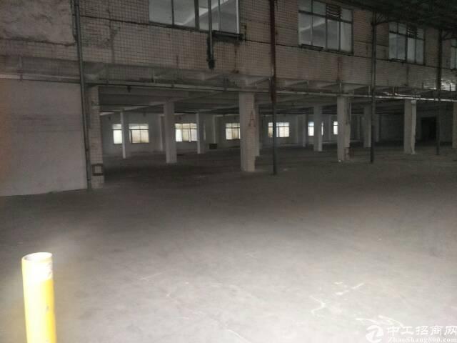 广州市增城区新塘镇工业园区单一层空地大