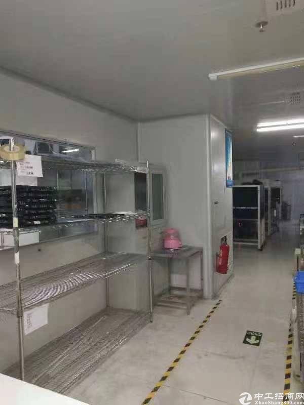凤岗镇雁田新出带办公室、无尘车间标准厂房6楼1200平