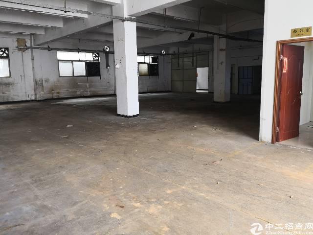 凤岗新出实际面积740平一楼出租