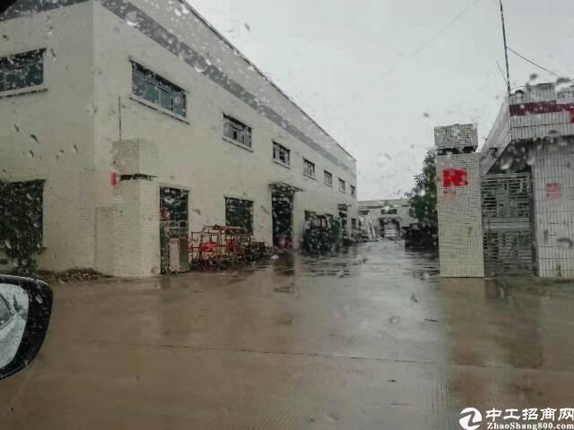 东莞高埗滴水12米砖墙到顶的九成新以上钢构急售