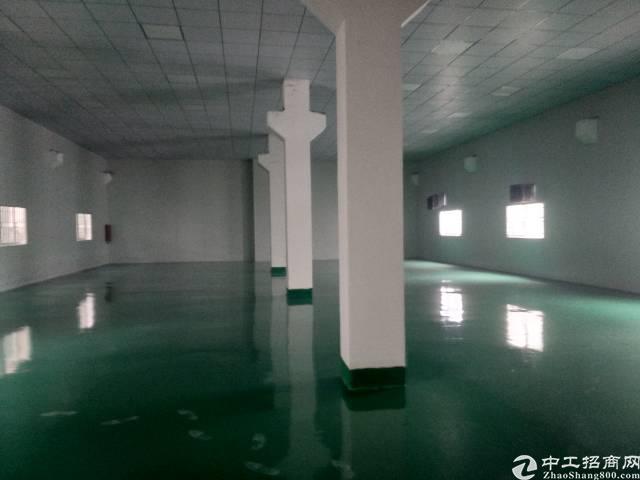 横沥镇豪华装修单一层厂房出租