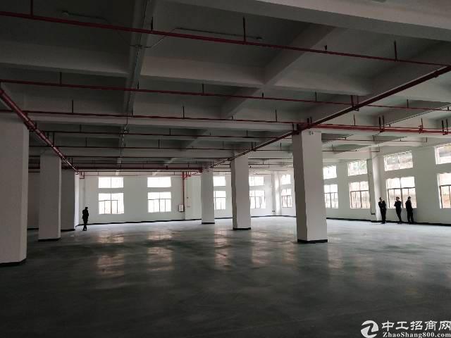 茶山镇新出优质厂房2800平方
