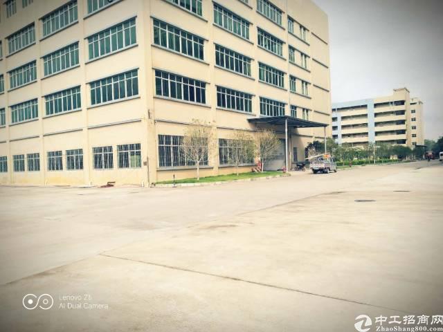 新塘主干道边新出独栋空地超大原房东9000平米厂房招租