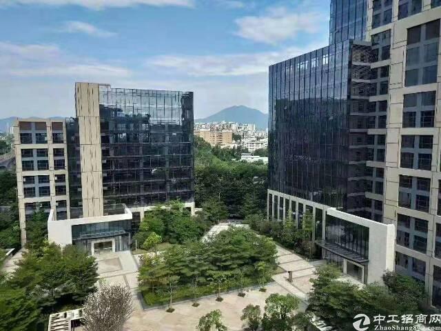 龙岗吉祥地铁站全新精装修办公楼50平方起
