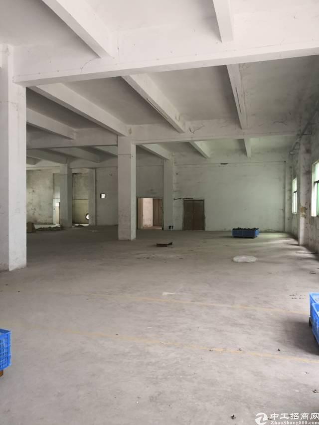 坪山坑梓工业区一楼1000平租22