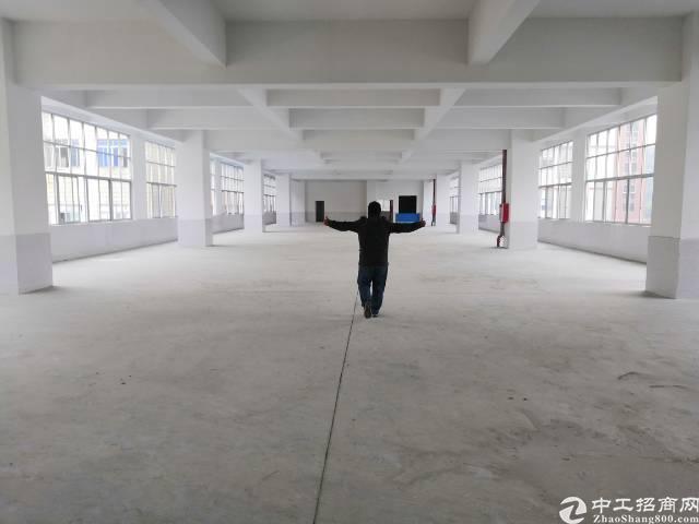 虎门镇沙角西湖路独栋高8米1300平方米25元㎡2楼高5米.