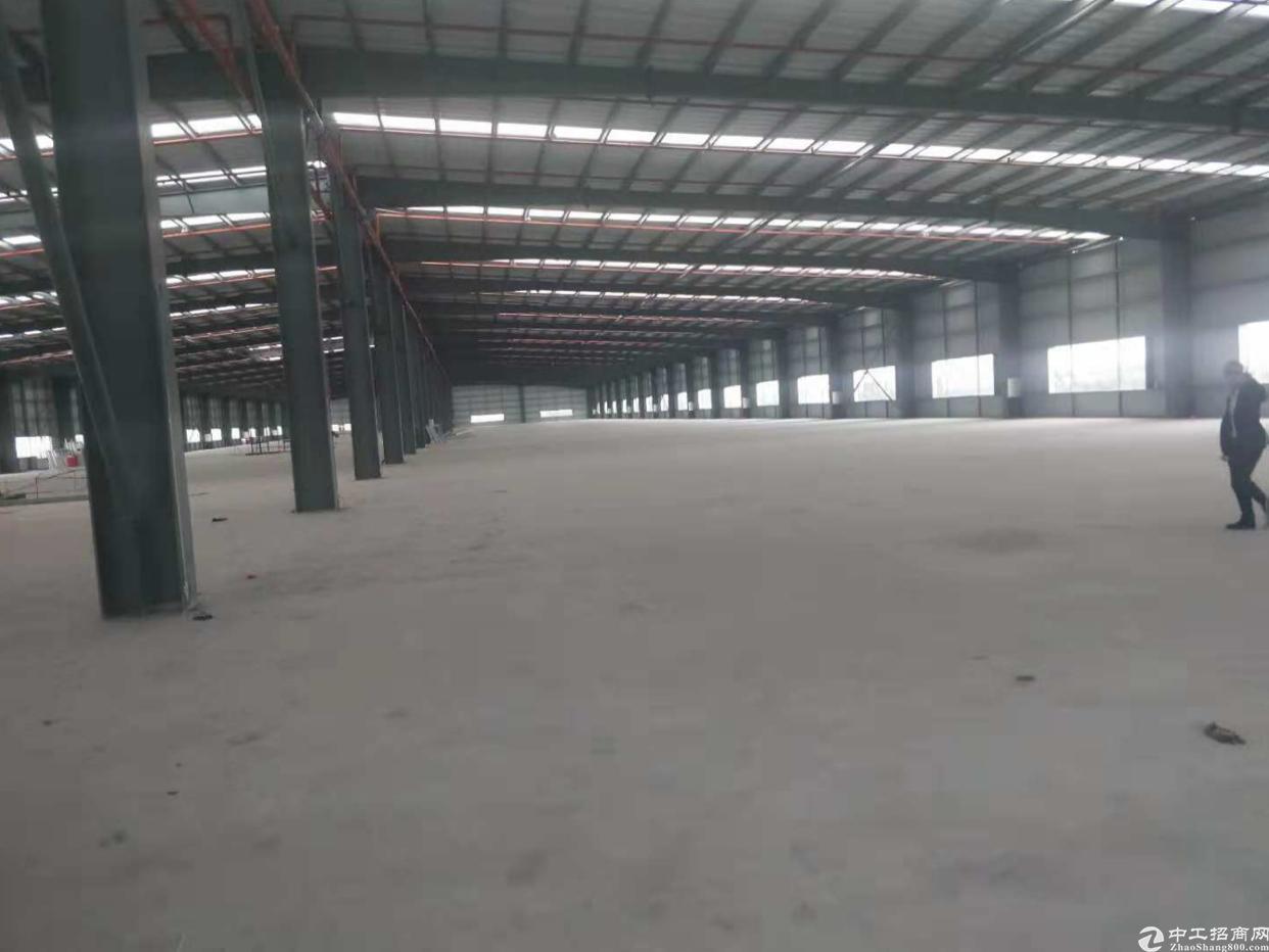 西乡鹤洲九围一路7000平方钢构出租,租金35元月。