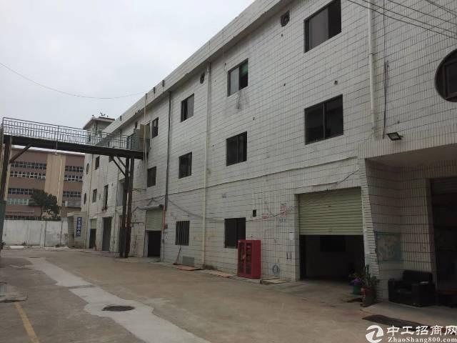 沙井高速出口附近,村委楼上厂房1200出租,面积实在,