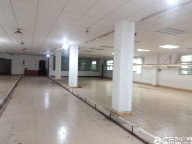 茶山镇原房东精装修厂房二楼780平方出租