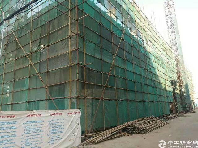 茶山镇原房东新建独门独院标准厂房4500平方