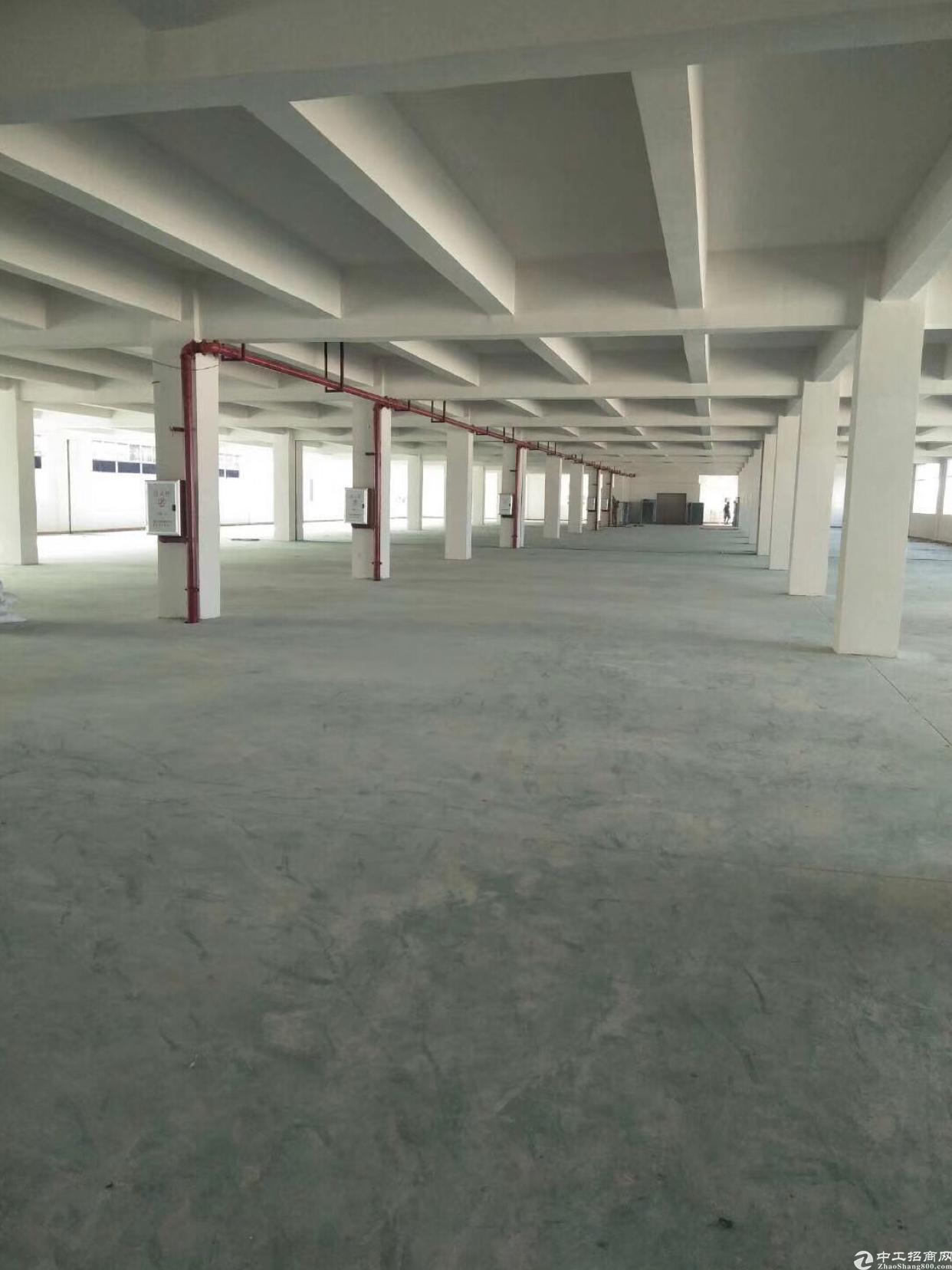 广州新塘新出楼上标准厂房招租