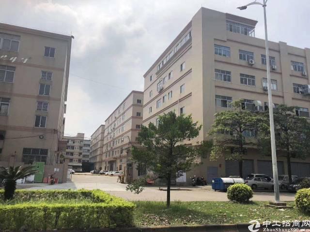坪山坑梓中心红本产业园2万平厂房出租500平起分租