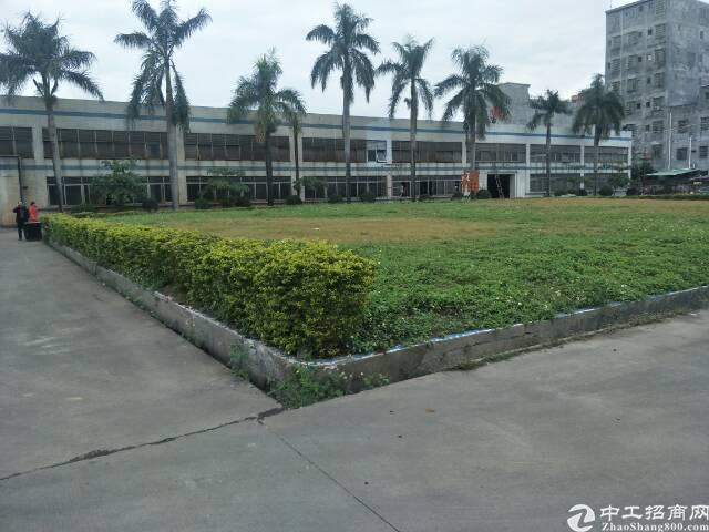 东莞市标准单一层厂房8000平米出售