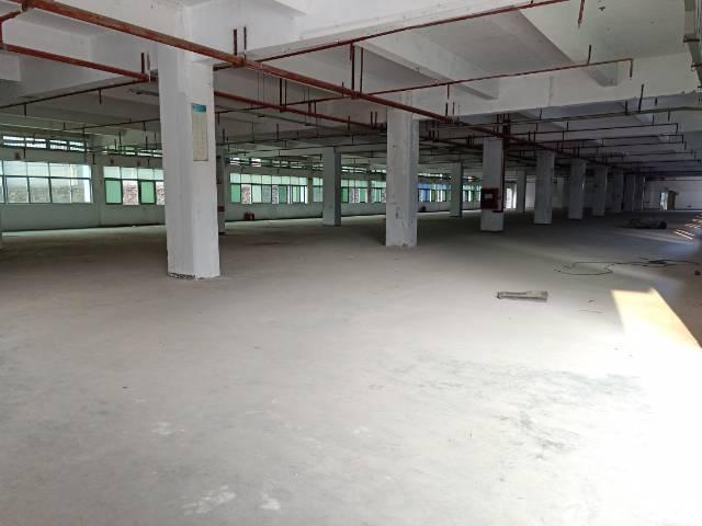 坑梓厂房出租龙田新出独院一楼1800平,高5米空地3000平