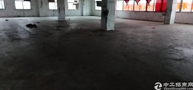 万江区标准厂房出租楼上厂房,有电梯