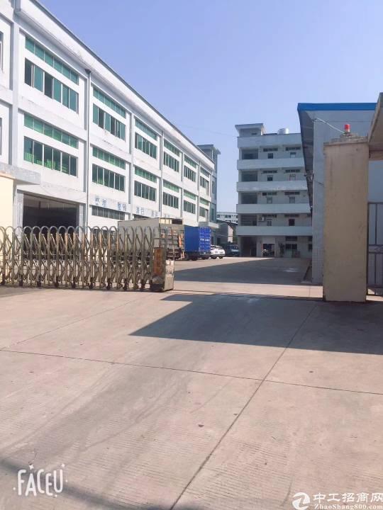 企石镇今天刚出独门独院原房东厂房