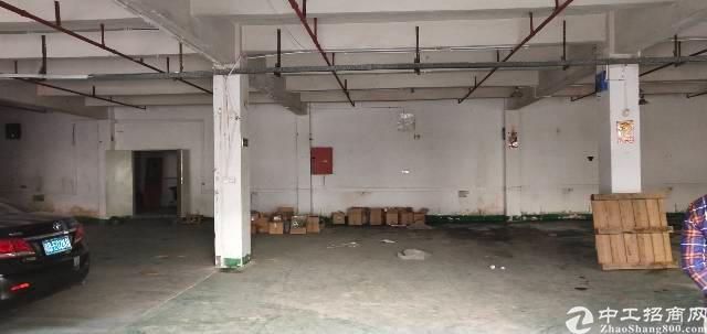 宝安西乡鹤洲新出一楼厂房700平方