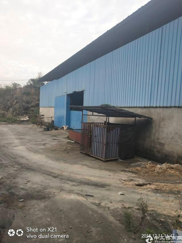 大岭山镇独院钢构厂房1300平方出租