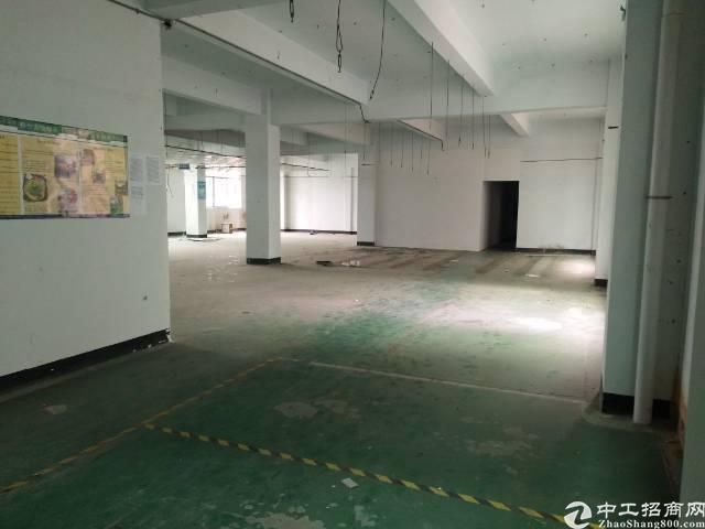 观澜桂花小学附近厂房招租本人物业