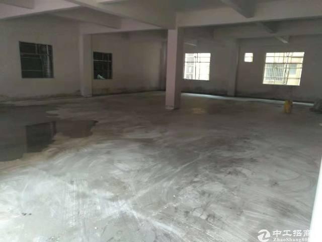 大岭山新出标准厂房三楼整层450平方米出租