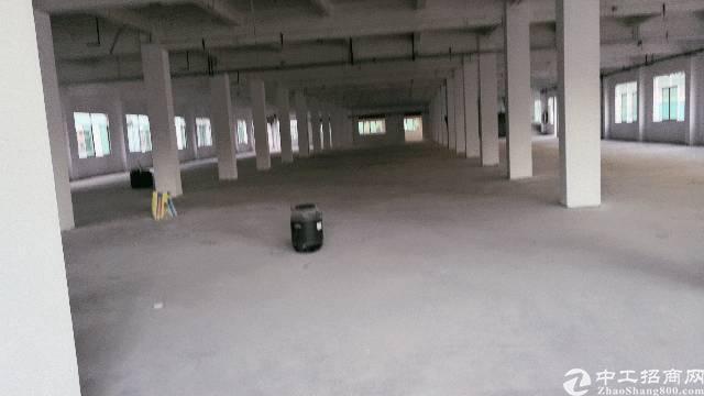 清溪镇靠近塘夏,凤岗带卸货平台一楼厂房2500平米出租-图2
