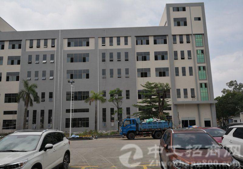 白濠村新出12000平红本独院,一楼高5.5米带牛角,翻新中