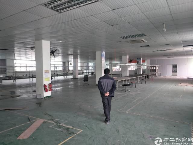 深圳沙井新桥高速出口附近新出装修2000平方厂房出租
