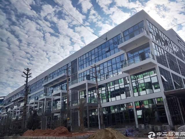 龙华电商园,文化企业可享受房租40块补贴