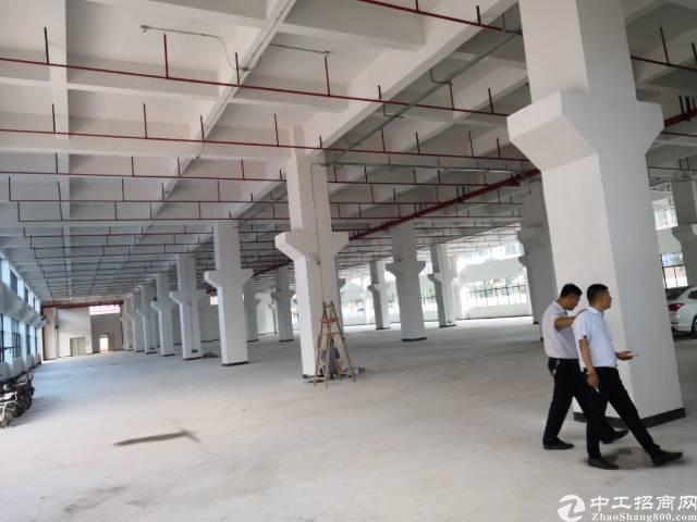 全新标准厂房出租一二楼4000平方米,可分层租