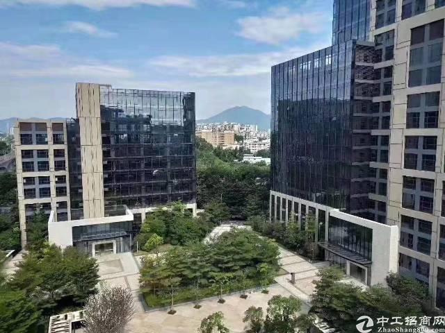 深圳新出全新红本综合楼出租大小可以分租