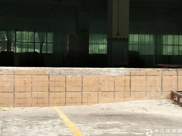 布吉厂房出租,原房东,带卸货平台,一楼2600平方,合同5年