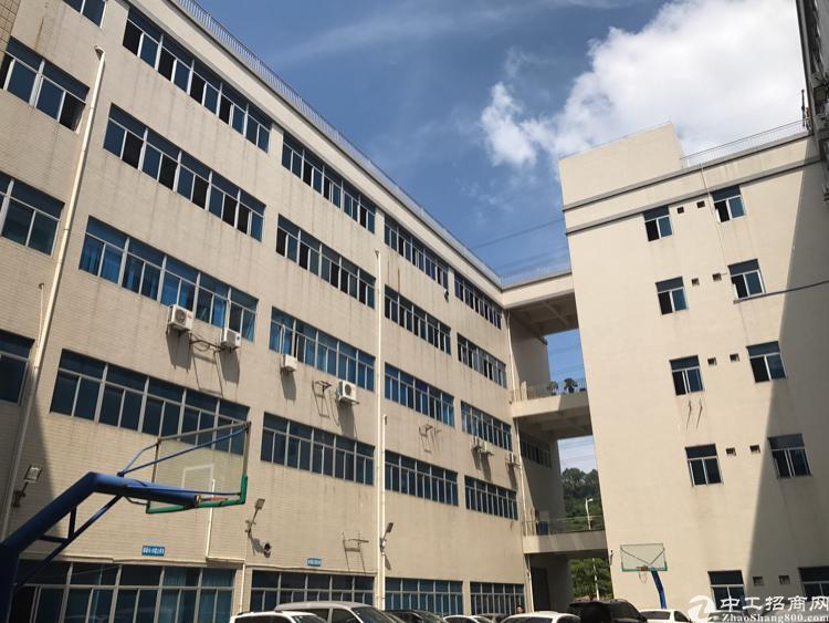 东莞樟木头双证25000方厂房出售